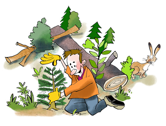 Symbolbild Freiwilligentage
